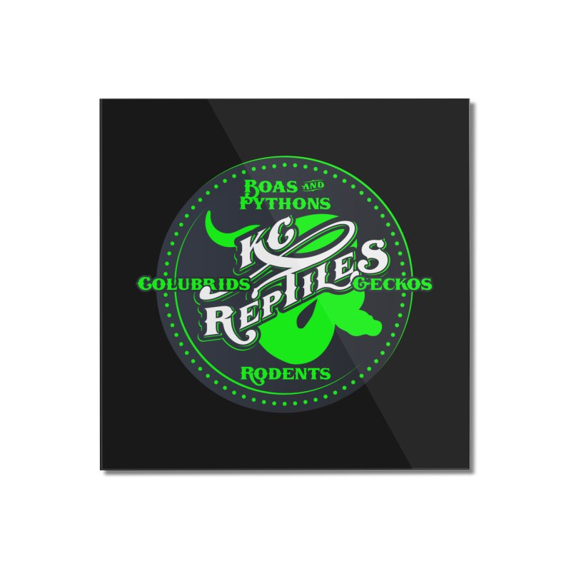 KC Reptiles Home Mounted Acrylic Print by Drawn to Scales