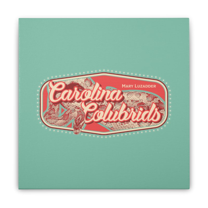 Carolina Colubrids Home Stretched Canvas by Drawn to Scales