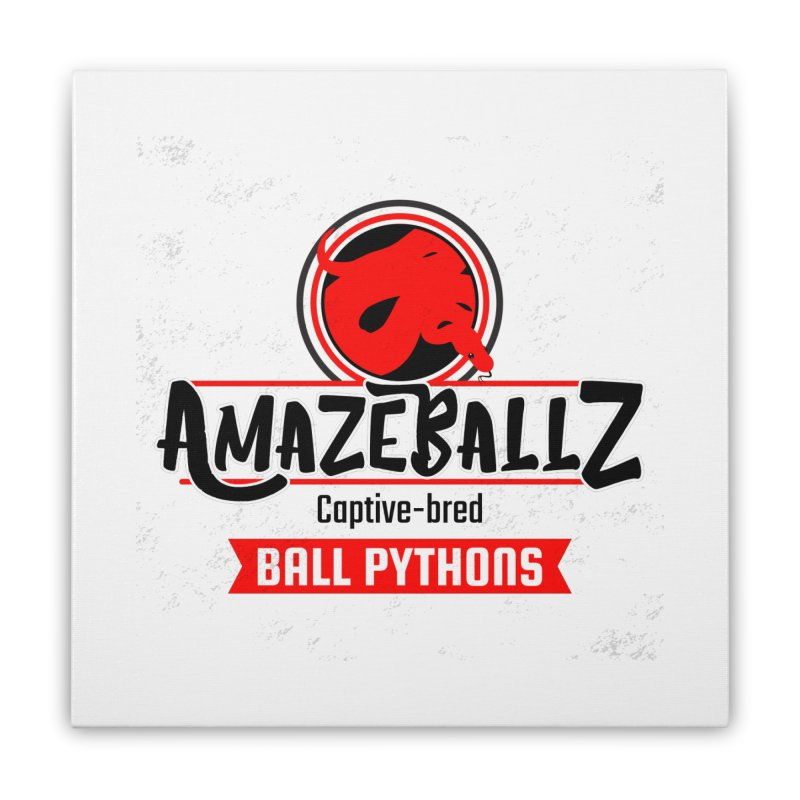 AmazeBallz Home Stretched Canvas by Drawn to Scales