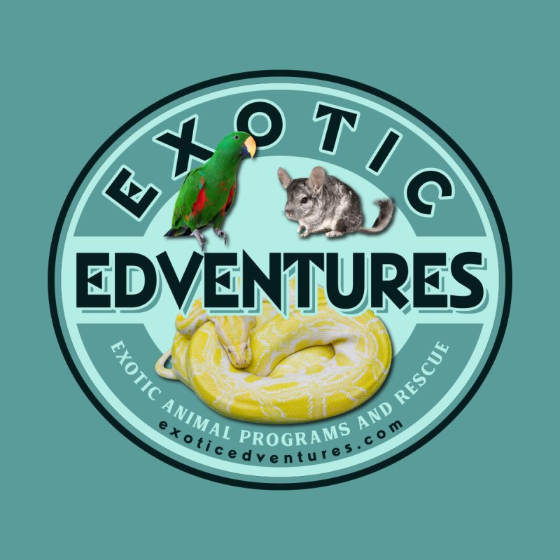 Exotic Adventures Women's T-Shirt by Drawn to Scales
