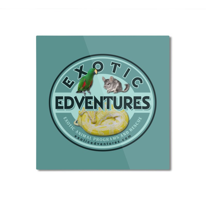 Exotic Adventures Home Mounted Aluminum Print by Drawn to Scales