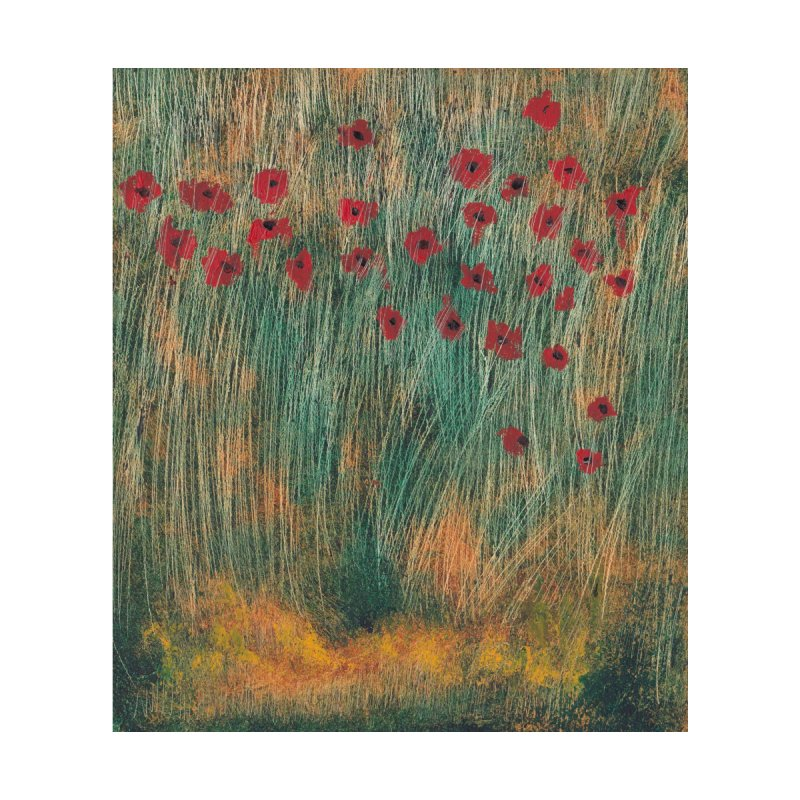 Poppies in a Field on High Grass Women's T-Shirt by duocuspdesign Artist Shop