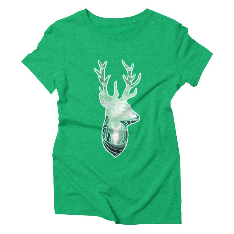Winter Spirit Women's Triblend T-Shirt by DVerissimo's