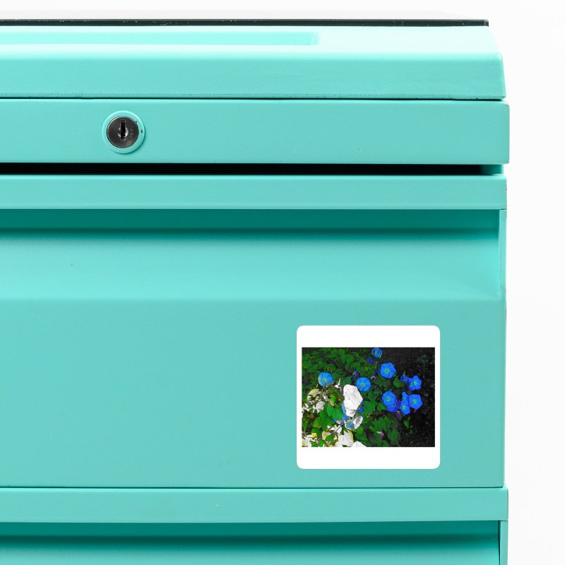 Morning Glories 3825 Accessories Magnet by Korok Studios Artist Shop