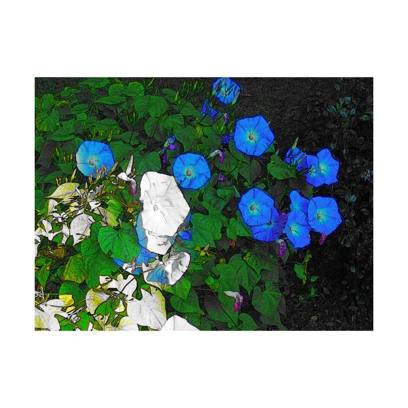 Morning Glories 3825 Accessories Sticker by Korok Studios Artist Shop