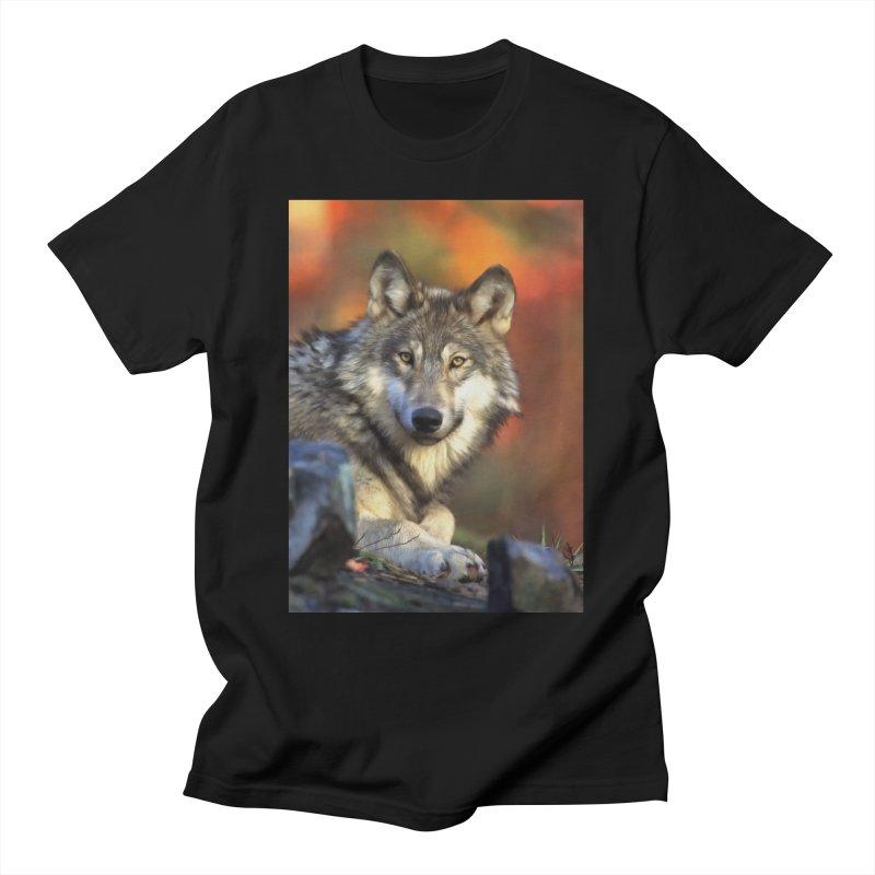 AUTUMN WOLF Men's T-Shirt by Eddie Christian's Artist Shop