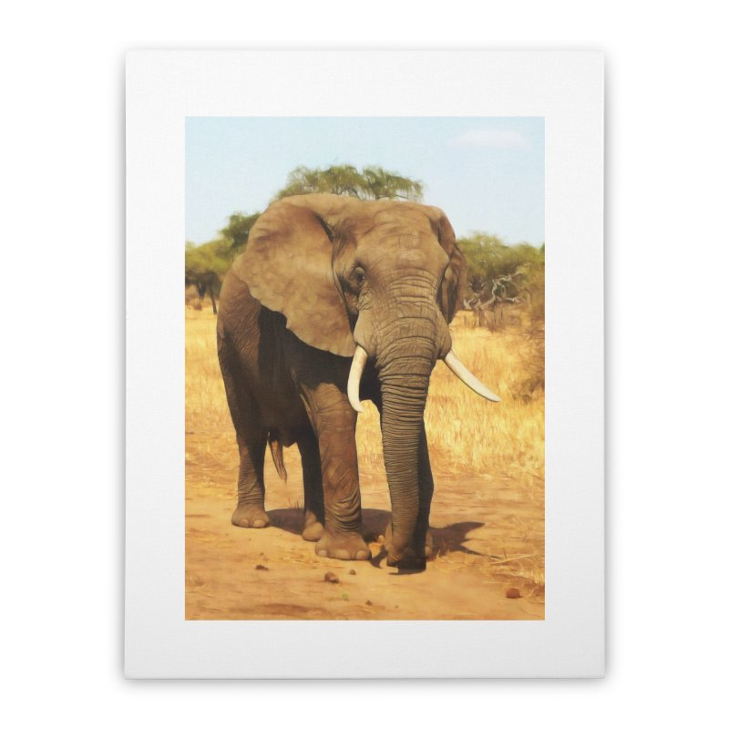 ELEPHANT WALK Home Stretched Canvas by Eddie Christian's Artist Shop
