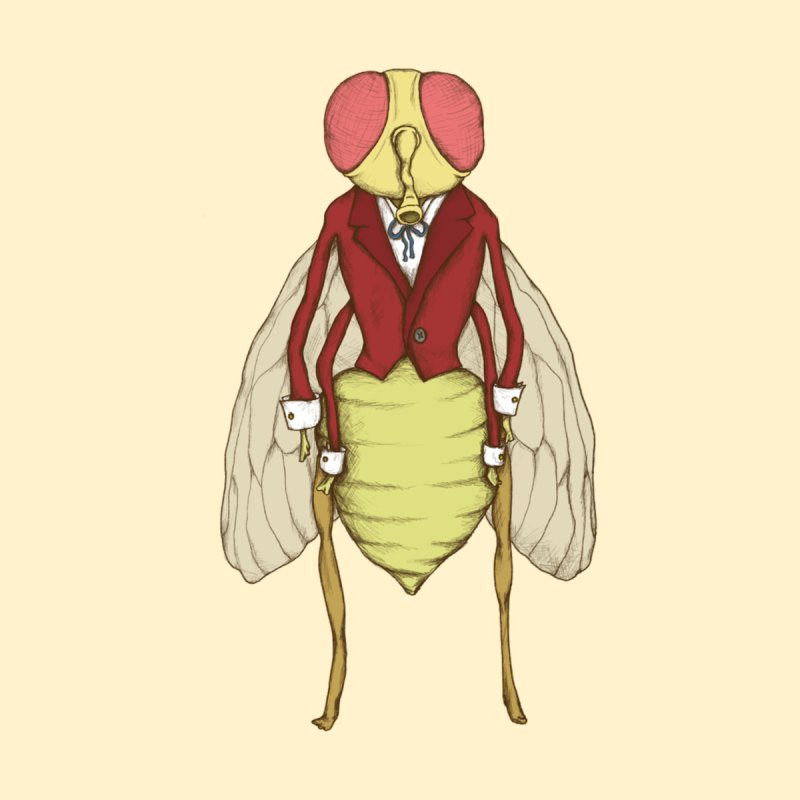 The Fly in Suit Women's T-Shirt by Eggplantation's Artist Shop