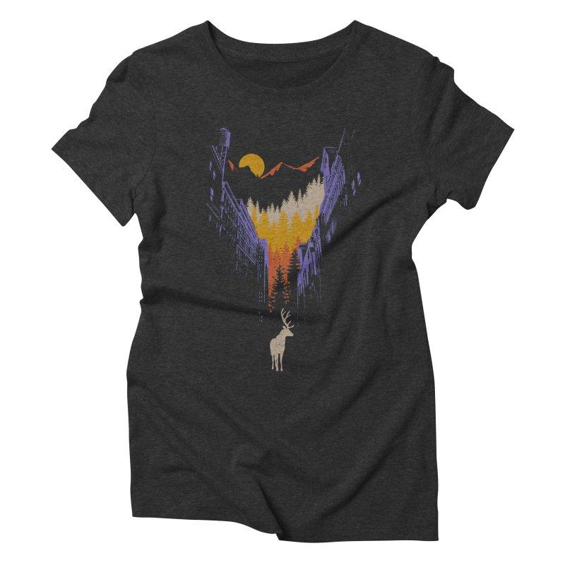 The Wanderer Women's Triblend T-Shirt by elanharris's Artist Shop