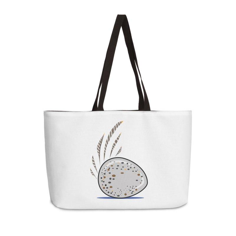 Elemental Bor Accessories Bag by Elementiad Artist Shop