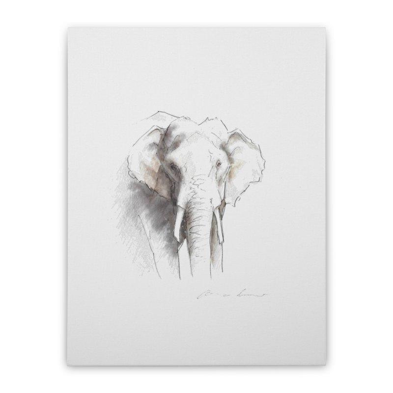 Carina Kramer - Asian Elephant Sketch Home Stretched Canvas by Trunks & Leaves' Artist Shop