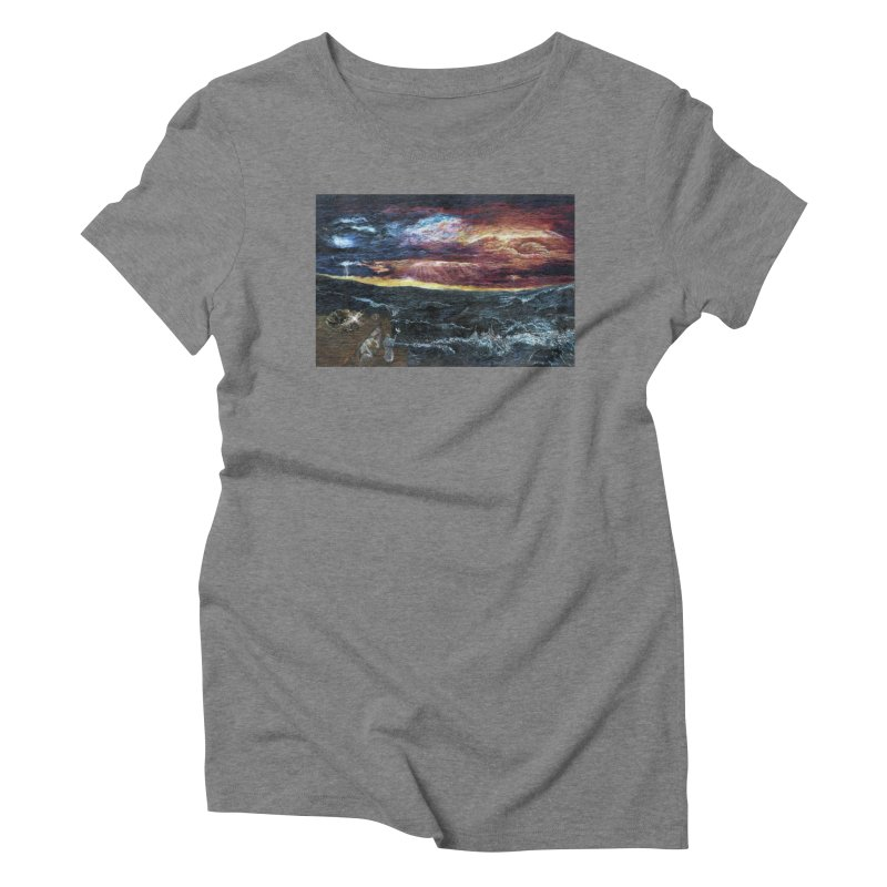 noahs ark Women's Triblend T-Shirt by Elevated Space