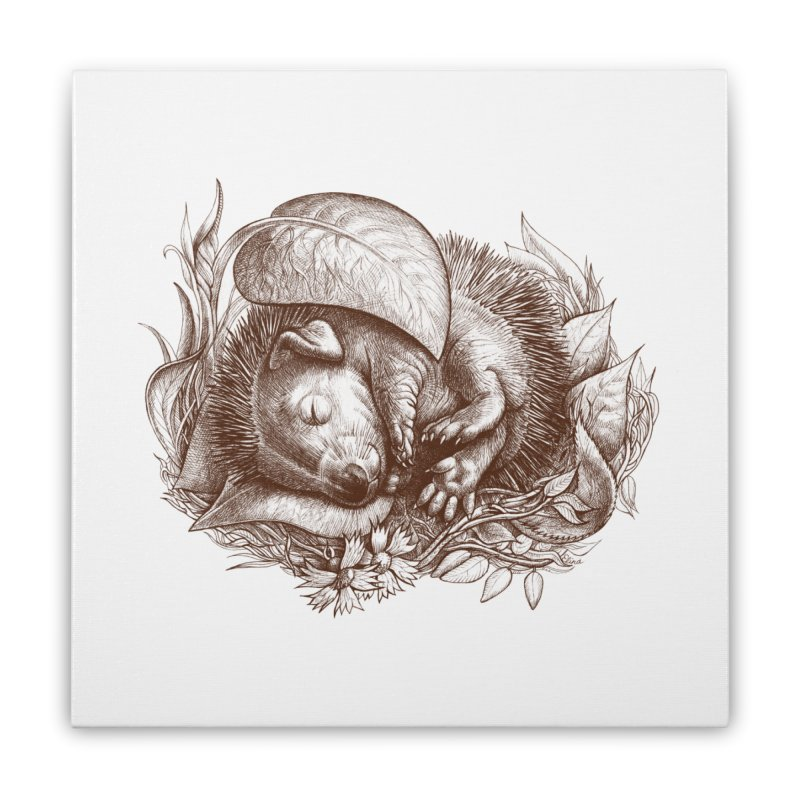 Baby hedgehog sleeping Home Stretched Canvas by elinakious's Artist Shop