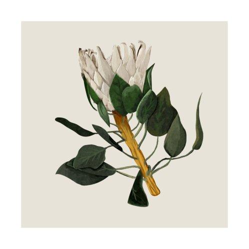 Design for Protea