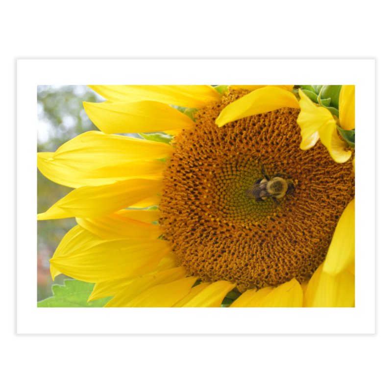 Tumblebee (natural) Home Fine Art Print by Ella Arrow, Curator of Wonder