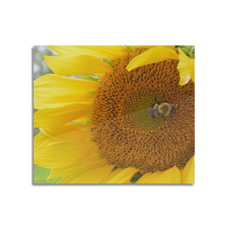 Tumblebee (natural) Home Mounted Aluminum Print by Ella Arrow, Curator of Wonder