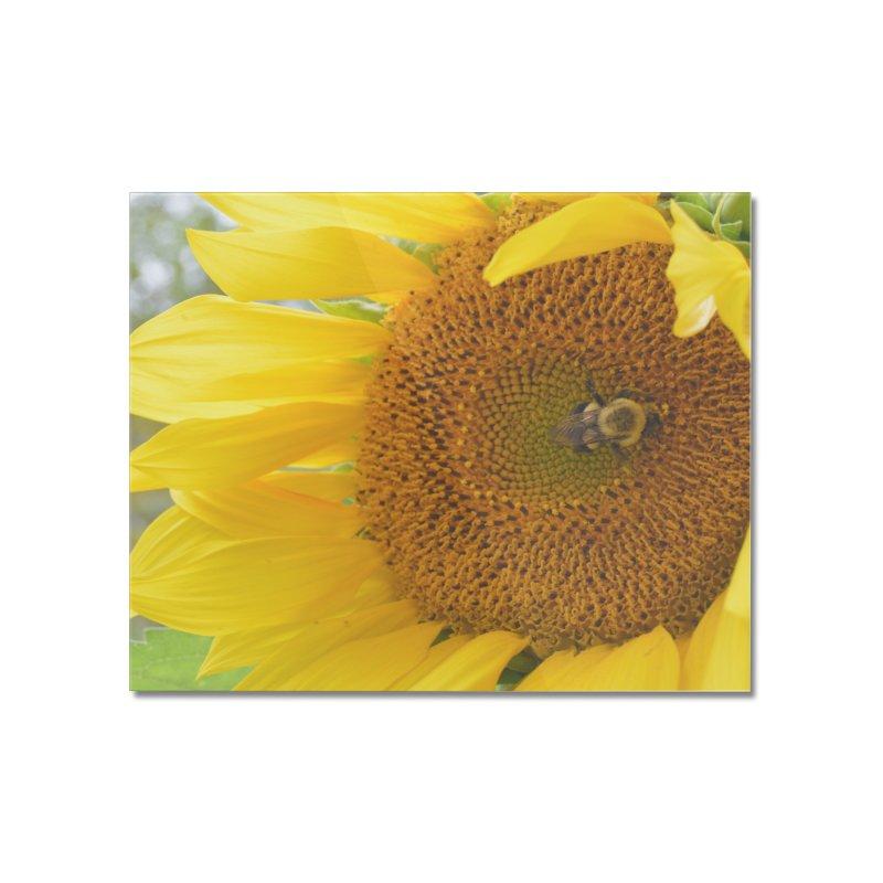 Tumblebee (natural) Home Mounted Acrylic Print by Ella Arrow, Curator of Wonder