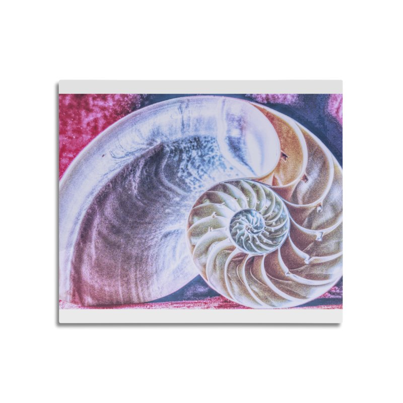 All For Naut Home Mounted Aluminum Print by Ella Arrow, Curator of Wonder
