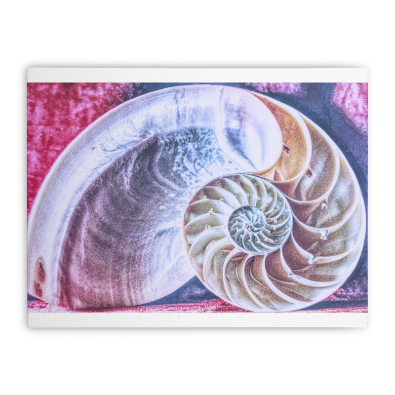 All For Naut Home Stretched Canvas by Ella Arrow, Curator of Wonder