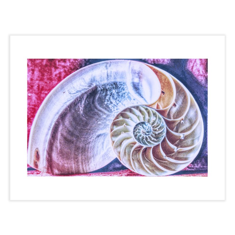 All For Naut Home Fine Art Print by Ella Arrow, Curator of Wonder