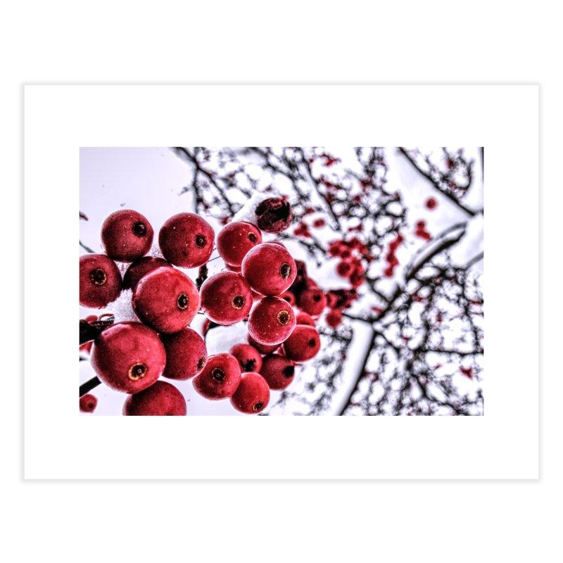 Snow Apples Home Fine Art Print by Ella Arrow, Curator of Wonder