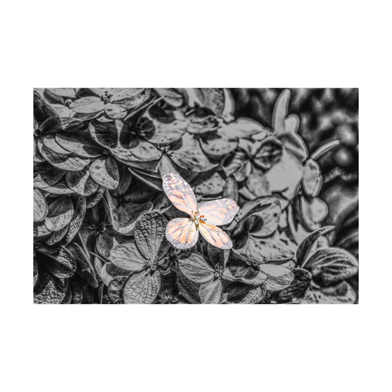 Butterfly Bush Home Stretched Canvas by Ella Arrow, Curator of Wonder