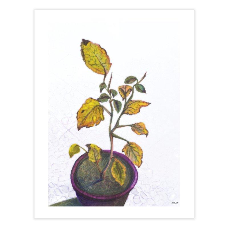 plant pot  Home Fine Art Print by ellagershon's Artist Shop