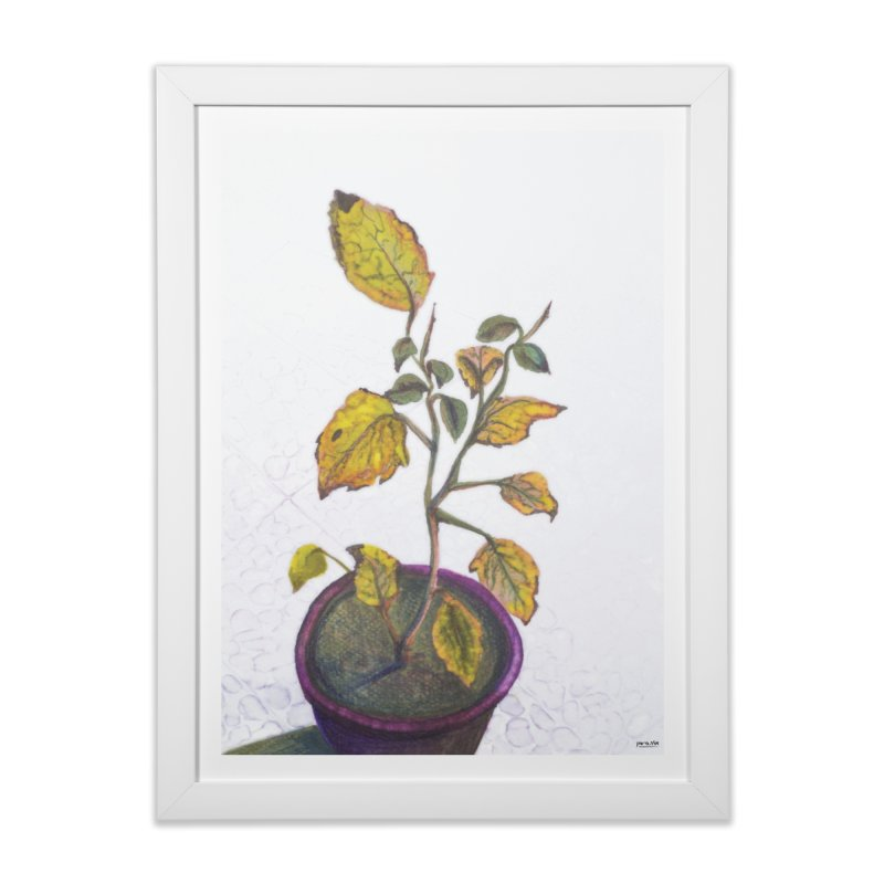 plant pot  Home Framed Fine Art Print by ellagershon's Artist Shop