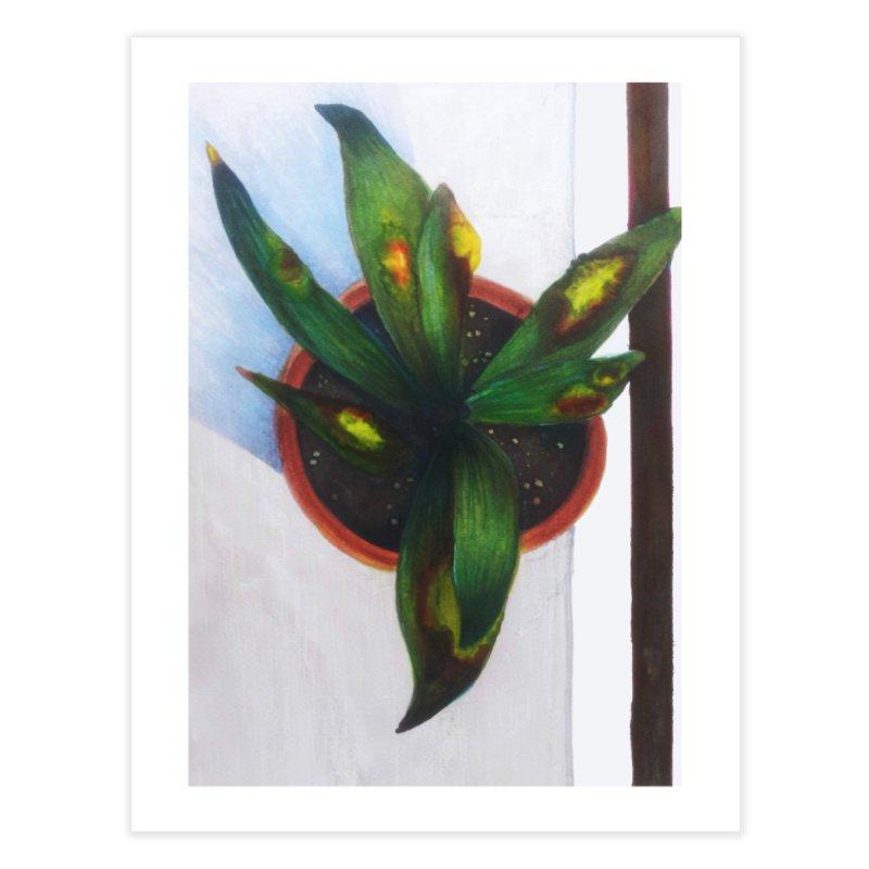 plant pot 3 Home Fine Art Print by ellagershon's Artist Shop