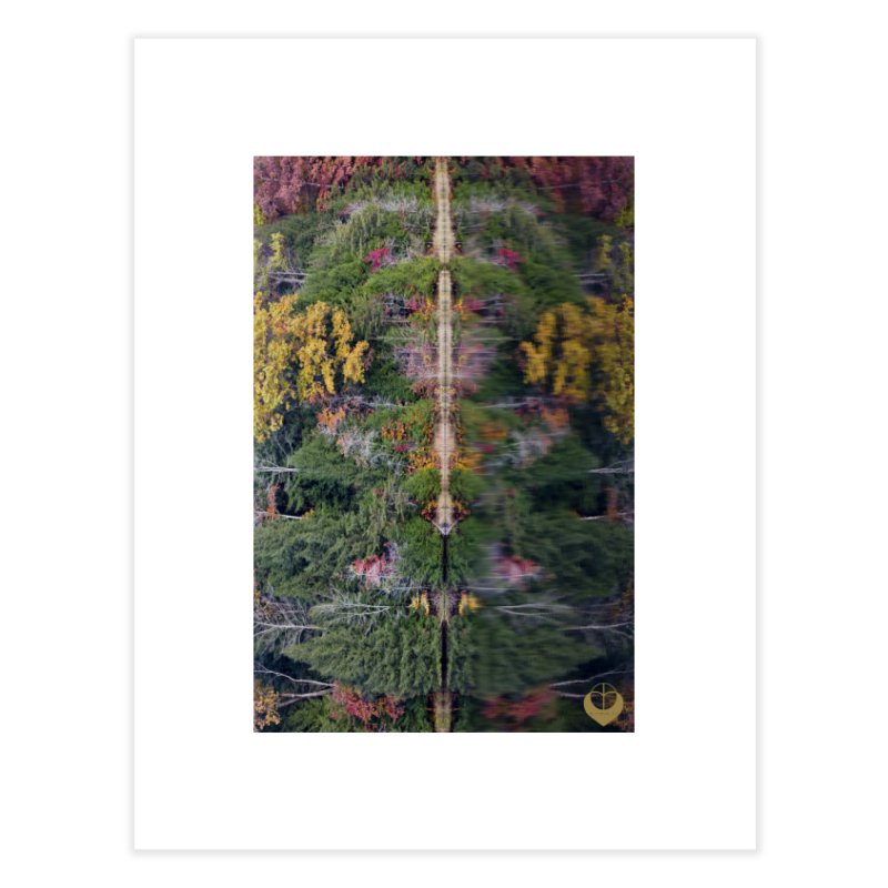 Reflect Home Fine Art Print by The Embien Empire