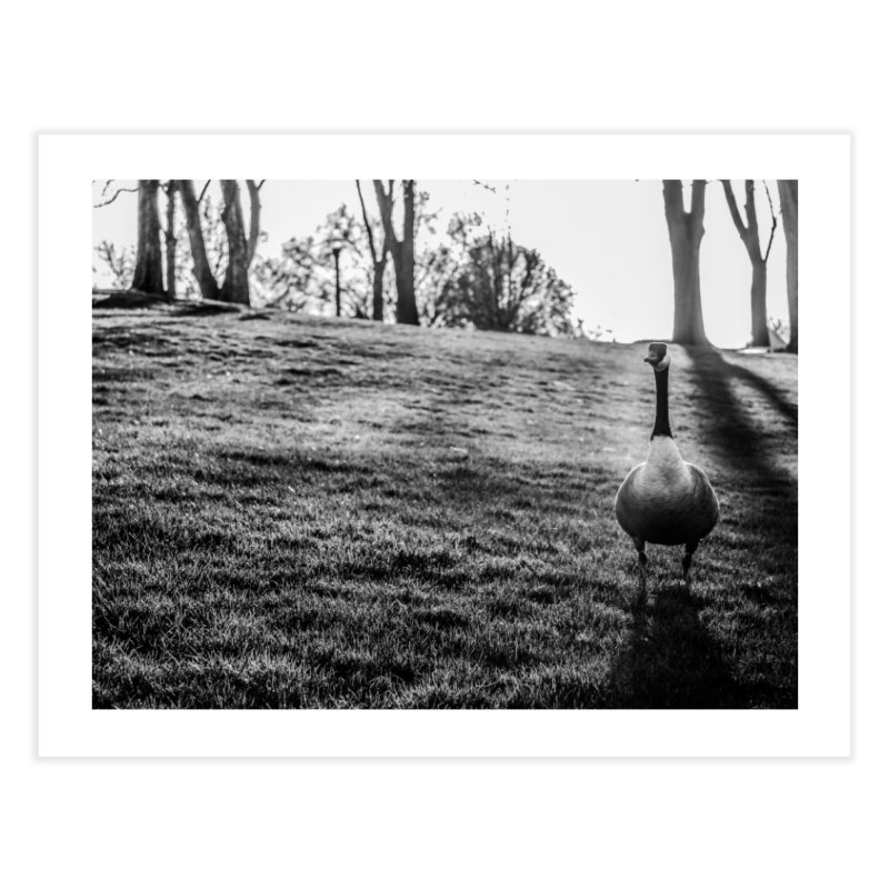 City of Geese Home Fine Art Print by emilyhanigan's Artist Shop