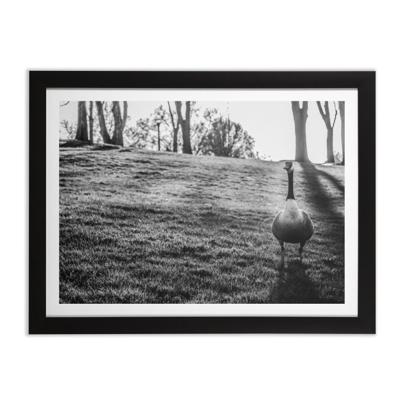 City of Geese Home Framed Fine Art Print by emilyhanigan's Artist Shop