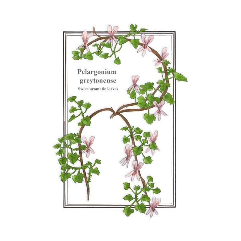Pelargonium greytonense Women's Zip-Up Hoody by Nature&speciesArt    Artist Shop
