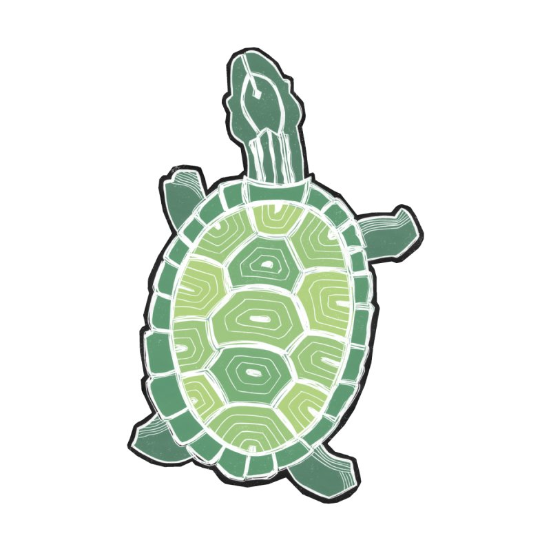 Turtle None  by erintaniguchi's Artist Shop