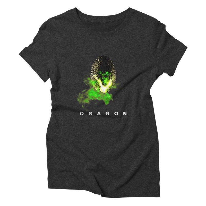 D R A G O N Women's Triblend T-shirt by Evan Ayres
