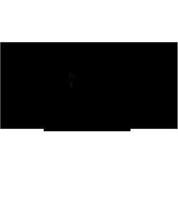 ExploreDaily's Artist Shop Logo
