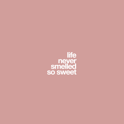 Life-Never-Smelled-So-Sweet