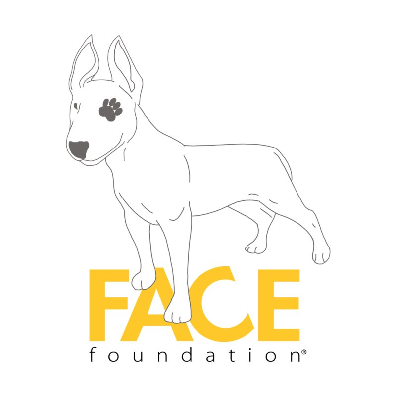 Aldo 2 by FACE Foundation's Shop