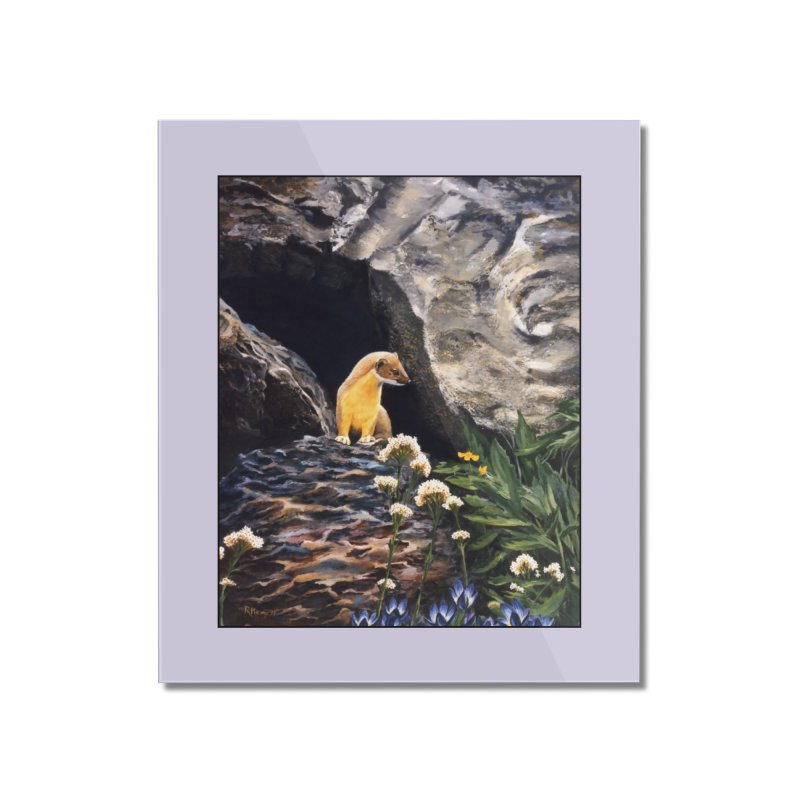 Springtime for Weasel Home Mounted Acrylic Print by Ferine Fire