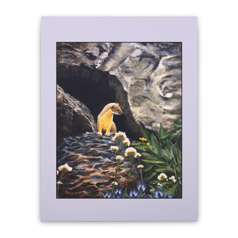 Springtime for Weasel Home Stretched Canvas by Ferine Fire