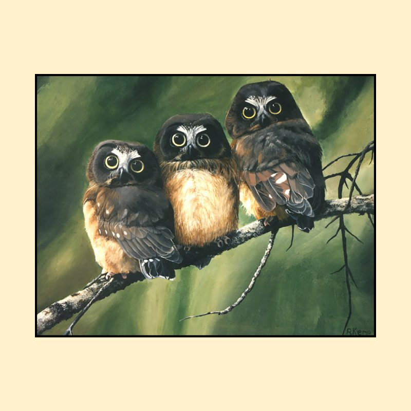 Saw Whet Owls by Ferine Fire