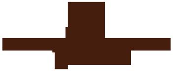 The Few Initiative Logo
