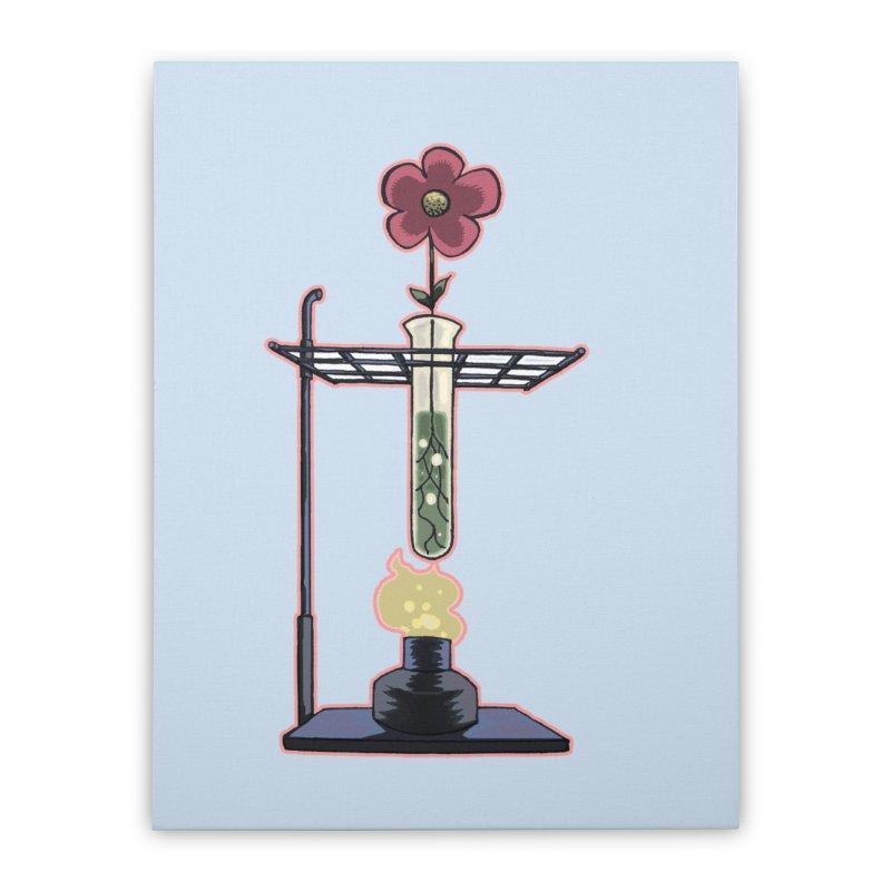 Bunsen Burner Flower Home Stretched Canvas by fireawaymarmotproductions's Artist Shop