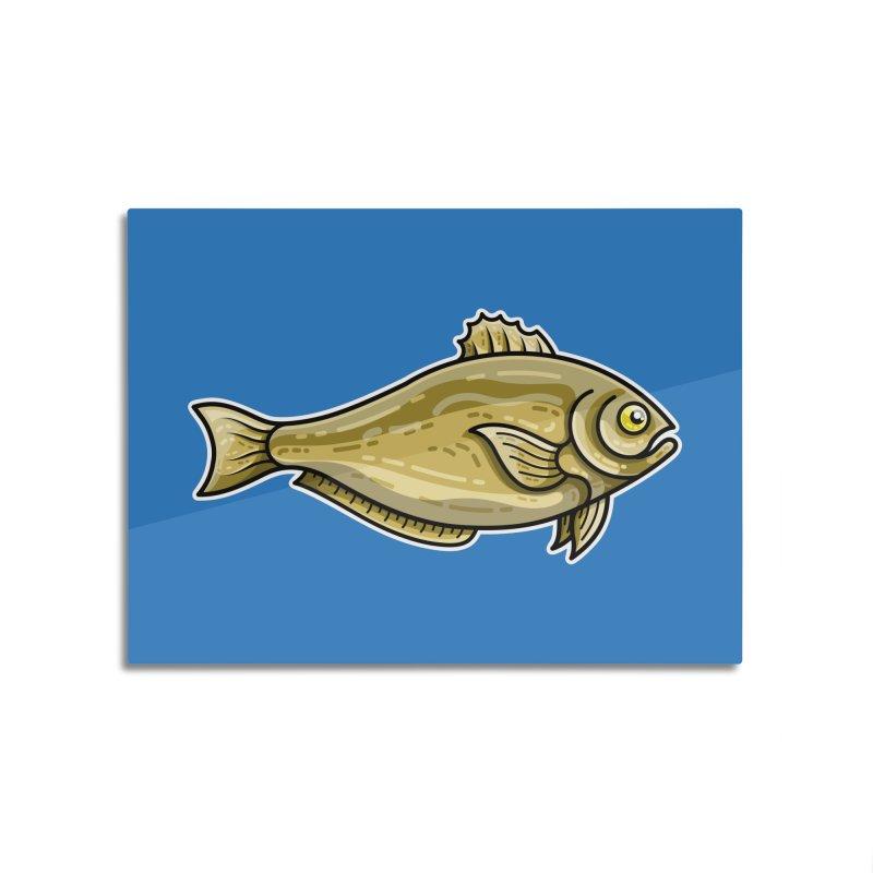 Carp Fish Home Mounted Aluminum Print by Flaming Imp's Artist Shop