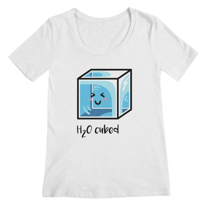 H2O Cubed Ice Block Chemistry Science Joke Women's Regular Scoop Neck by Flaming Imp's Artist Shop