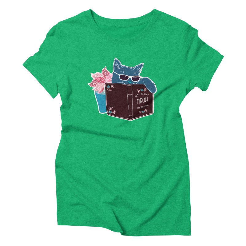 "Cool Cat ""Not Right Meow I'm Reading"" Cat with Sunglasses Book Quote Women's Triblend T-Shirt by Flourish & Flow's Artist Shop"