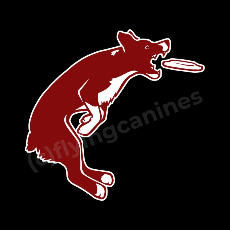 Sky High Flying Canines Logo Design by Flying Canines Shop