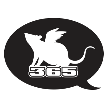 Flying Mouse365 Logo