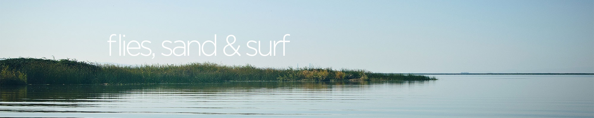 flysandsurf Cover