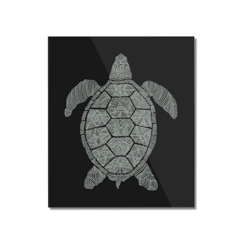 Turtle Home Mounted Acrylic Print by Frasq
